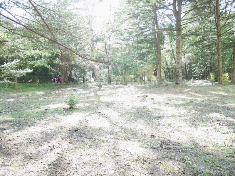 【中軽井沢南土地】広い敷地で自然の草花や樹を愉しめるスーパー徒歩圏内の稀少土地