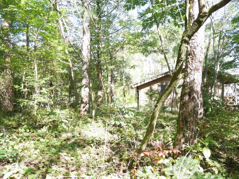 【追分土地】四季を十二分に愉しめる自然豊かな土地