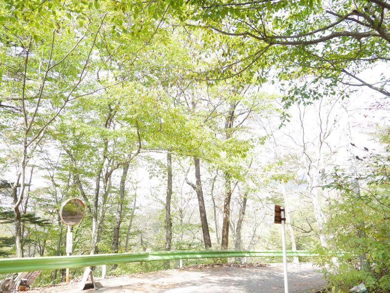 【旧軽井沢新築戸建】緑の借景を愉しむウッドデッキ付き別荘