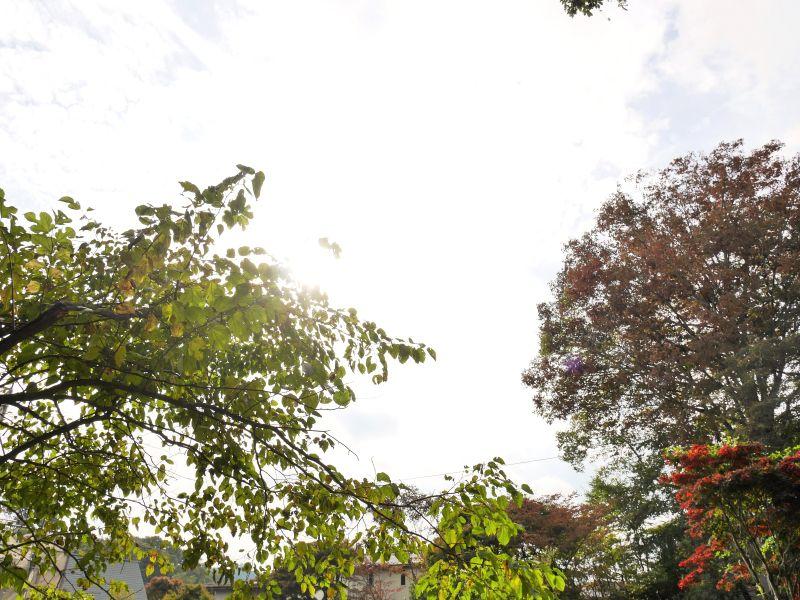 【塩沢土地①④】都会の喧騒から離れた風光明媚な場所でありながら利便性を備えた土地