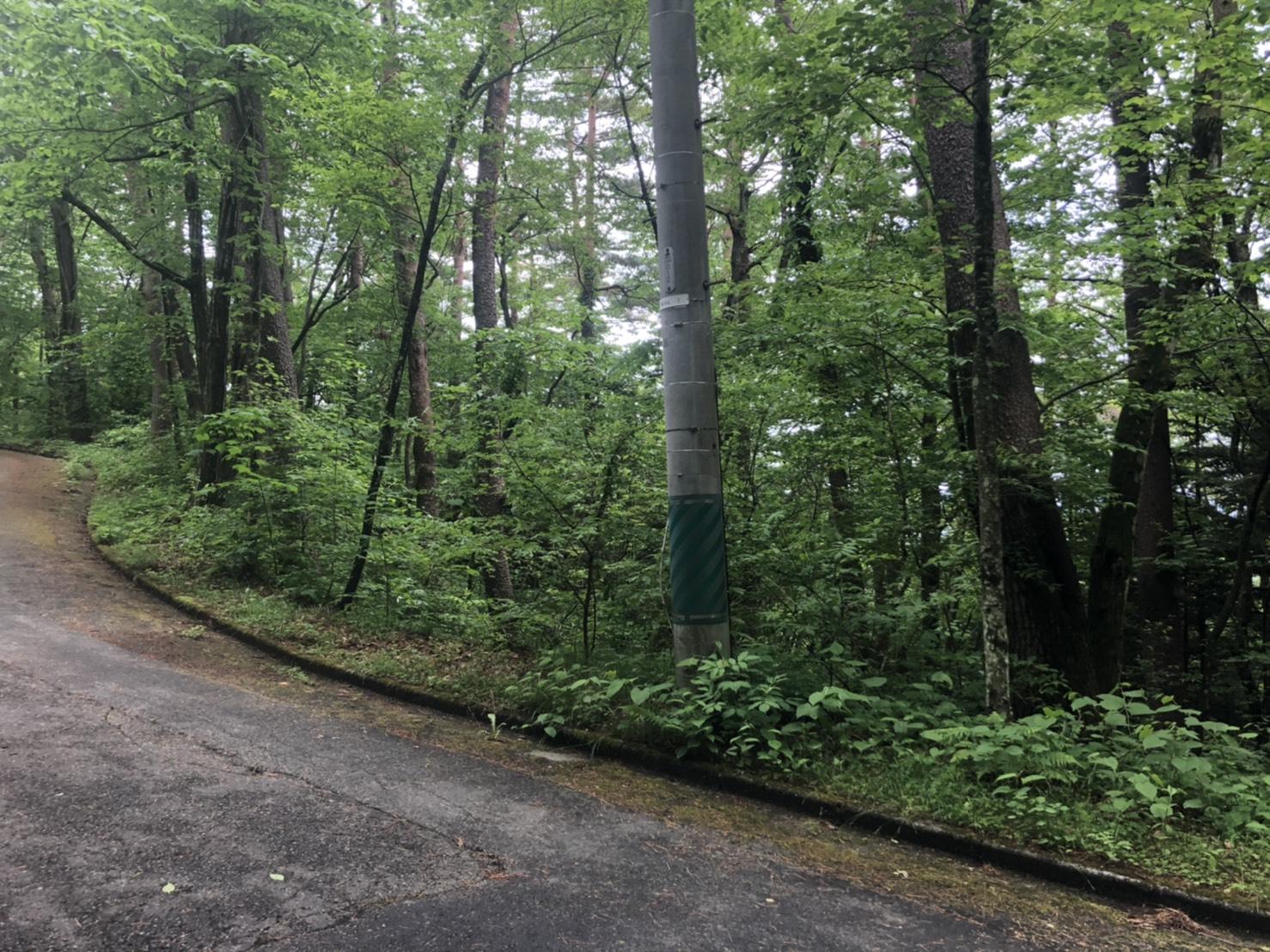 【千ヶ滝土地】自然を愉しむ別荘ライフ