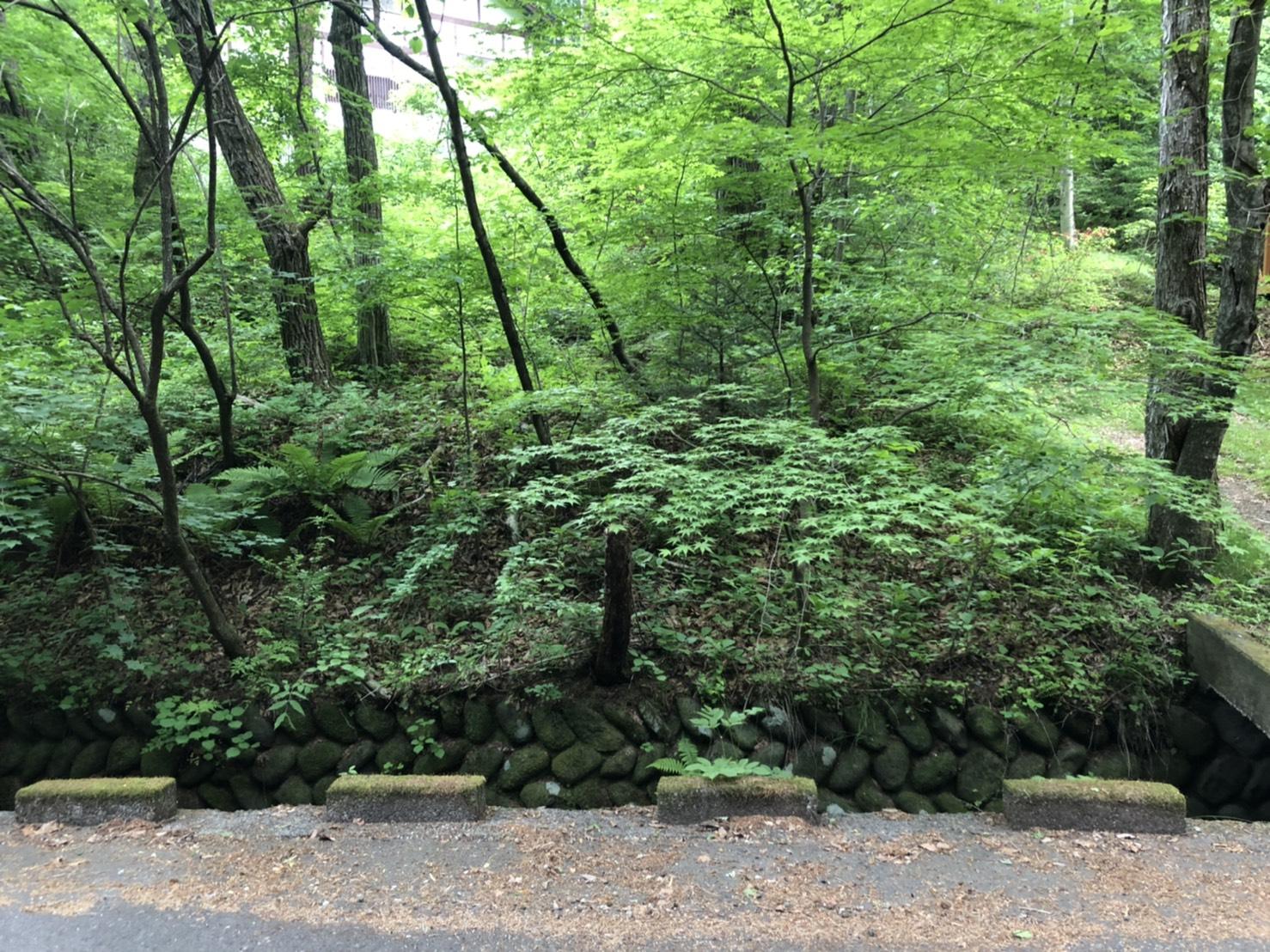 【千ヶ滝別荘地 中区 歌鳥の里 土地】小川のせせらぎを愉しむ別荘
