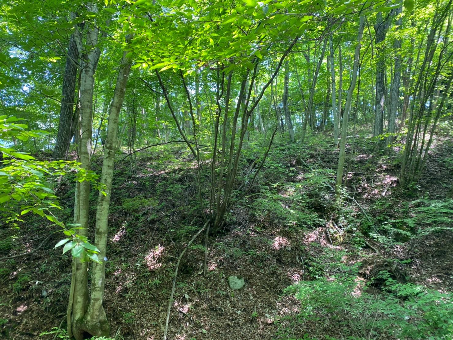 【八風の郷土地】八風山の麓に位置する緑とせせらぎを感じる生活