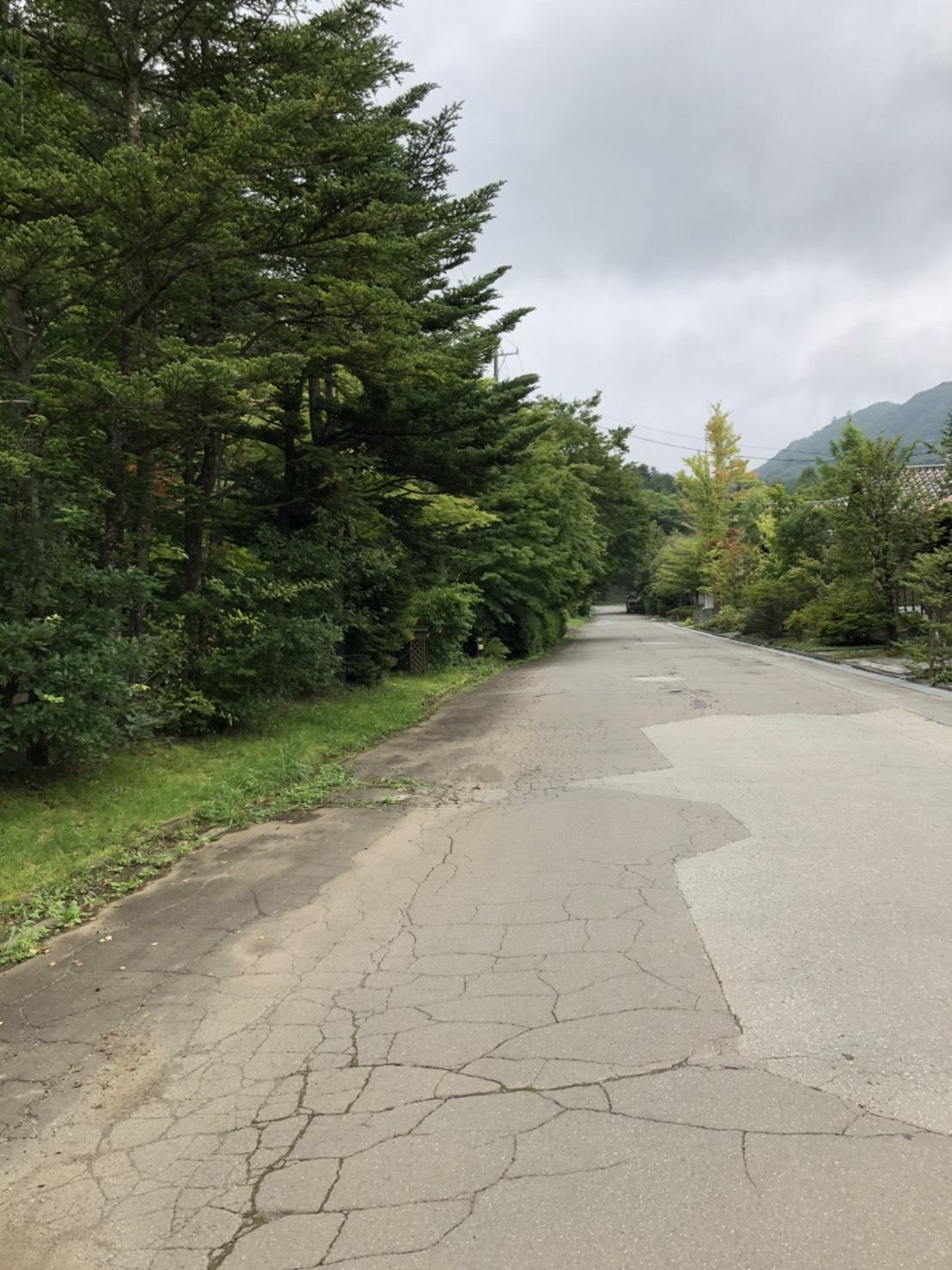 【南軽井沢_土地】ヨーロッパの片田舎の雰囲気が漂うレマン湖至近の土地
