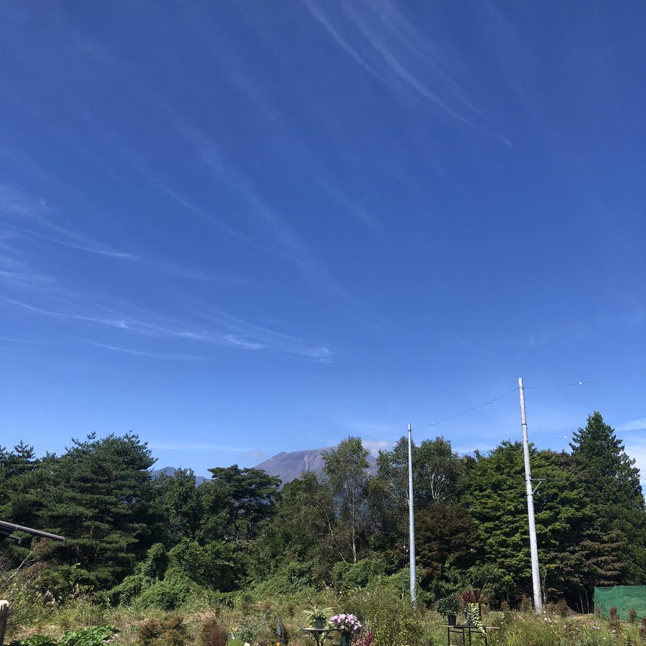 【中軽井沢土地】駅近の利便性の良い土地(区画C)